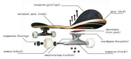 Анатомия скейтборда