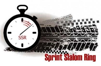 Sprint Slalom Ring 16 ноября на NRing