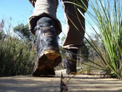 Виды обуви для туризма